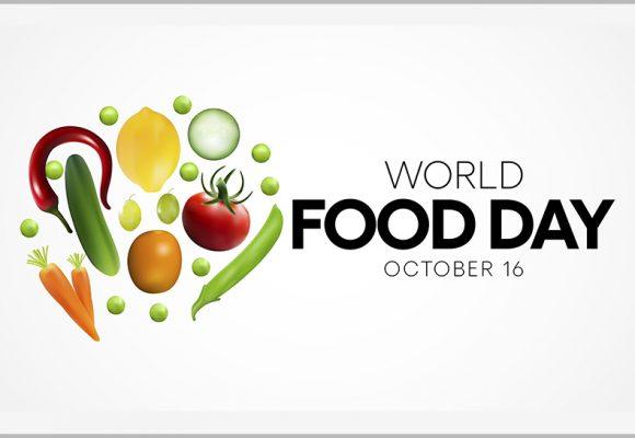 Journée Mondiale de l'Alimentation : le Plan Maroc Vert, un pilier de la lutte contre l'insécurité́ alimentaire